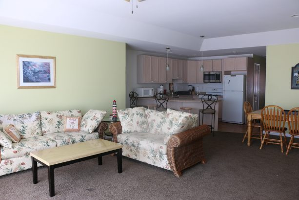 huge living area with flat screen tv