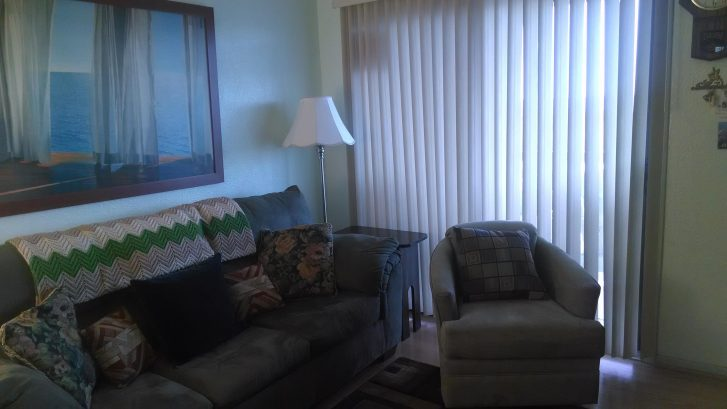 comfortable living room w/ pull out couch and flat screen TV