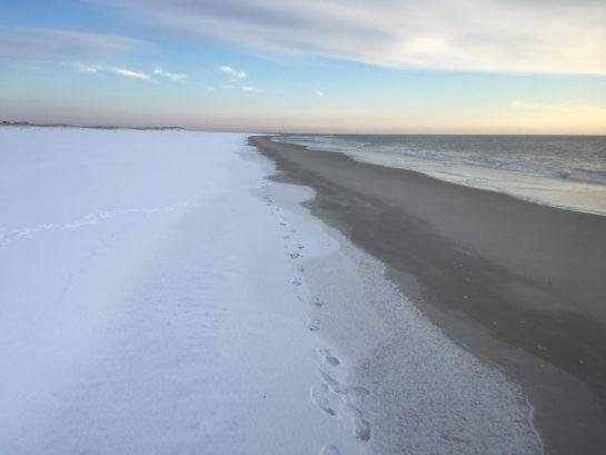 SUN, SAND, SURF AND.....SNOW?