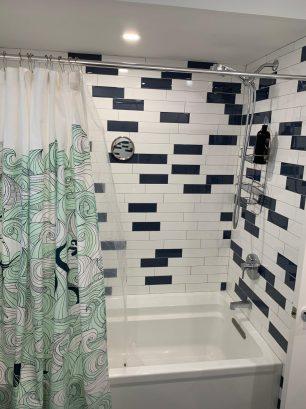 Hall Bathroom shower